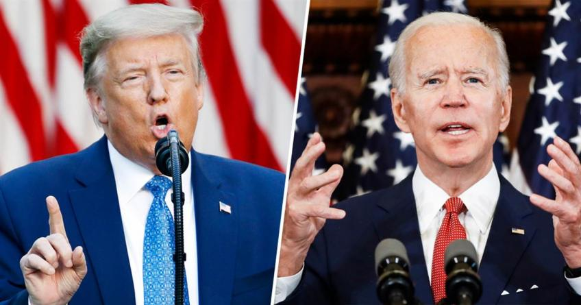 Will Joe Biden Restore Wildlife Protecting Laws Canceled By Donald Trump?